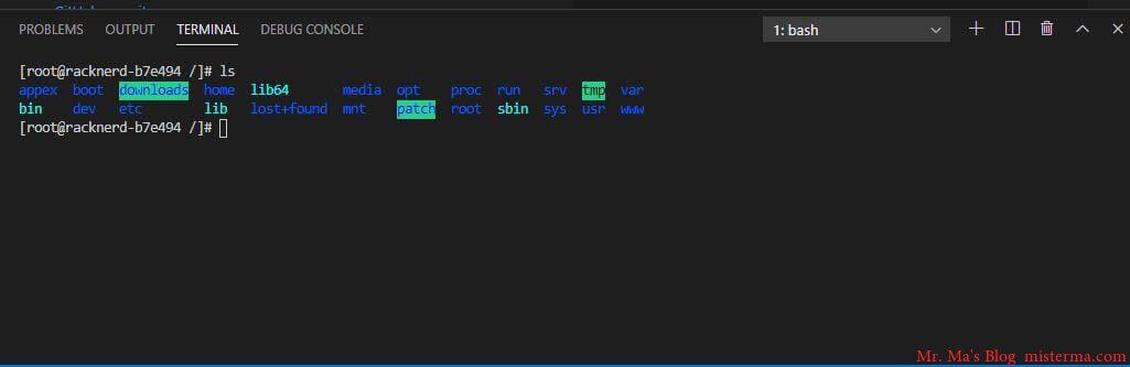 VSCode网页版终端